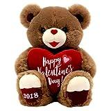 Valentines Day Gift Plush Teddy Bear 2018 'Happy Valentine's Day'