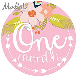 12 Monthly Baby Stickers, Tribal, Flowers, Feathers, Arrows, Girl, Baby Belly Stickers, Monthly Onesie Stickers, Baby Month Stickers, Arrows, Flowers, Tribal, Pink, Mint, Purple, Teal, Blue, Girl 2