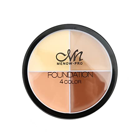 Image result for foundation 4 color