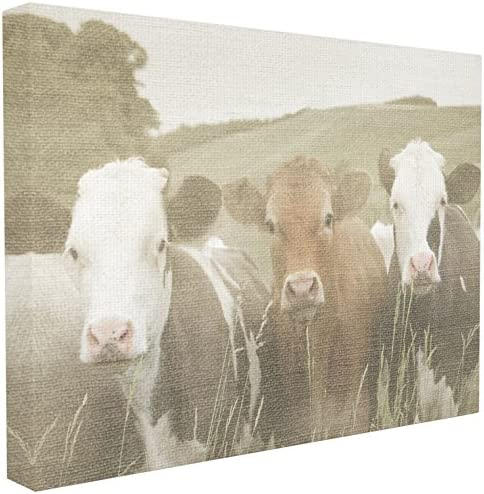 Stupell Home Collection Neighbors Oversized product image