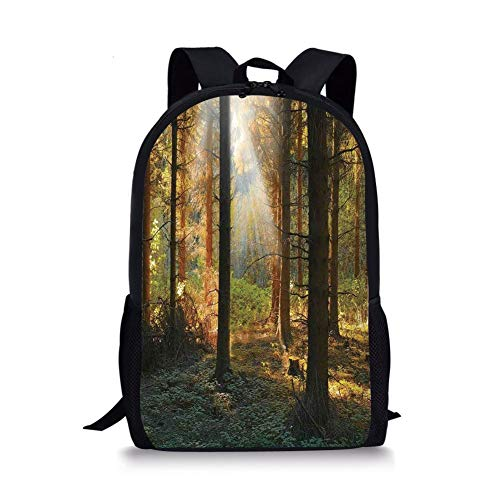 - School Bags Farm House Decor,Sunset View of Dark Pine Forest in Autumn Foggy Scene with Sunbeams Trunks Shadow,Orange Green for Boys&Girls Mens Sport Daypack