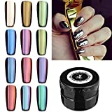 DANCINGNAIL 12 Colors Magic Mirror Chrome Effect Metallic Powder Set Nail Art Additive Pigment Sliver