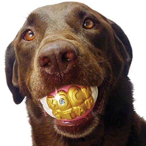 Funny Humunga Bling Hollow Ball Dog Toy - Looks Like A Ro...