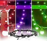 CHAUVET DJ Festoon Indoor/Outdoor Pixel-Mappable LED Effect Light Strings