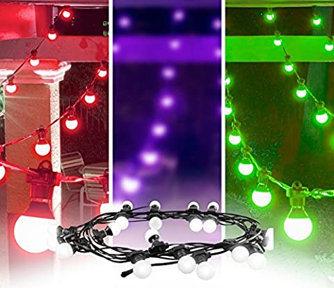 CHAUVET DJ Festoon Indoor/Outdoor Pixel-Mappable LED Effect Light Strings - Expandable Dj System