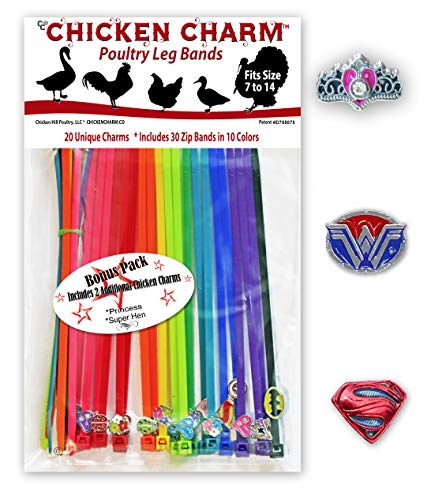 22 Chicken Charm Poultry Leg Bands - Includes Americas Favorite Super Hero's ()