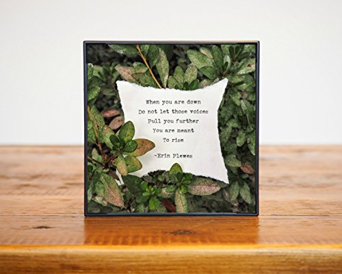 You Are Meant To Rise Inspirational Mini Framed Photograph 4x4 Poetry and Green Leaves In (Holiday Cubicle Decorations)