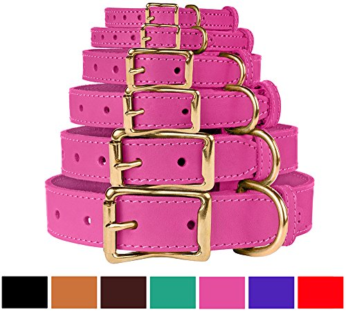 (BronzeDog Leather Dog Collar, Genuine & Durable, Brass Buckle Comfort Pet Collars Adjustable for Puppy Small Medium Large Dogs, Pink Red Black Brown Purple Green (Neck Size 17