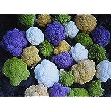 Rainbow Blend Cauliflower * Broccoli * Mixed Colors* 150 Seeds * Healthful*