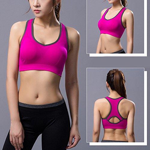 Zhuhaitf Women Sports Bra Professional Fitness Running Gym Bra Shockproof Push Up Seamless Tops Sports Bra 4031# Rose Red