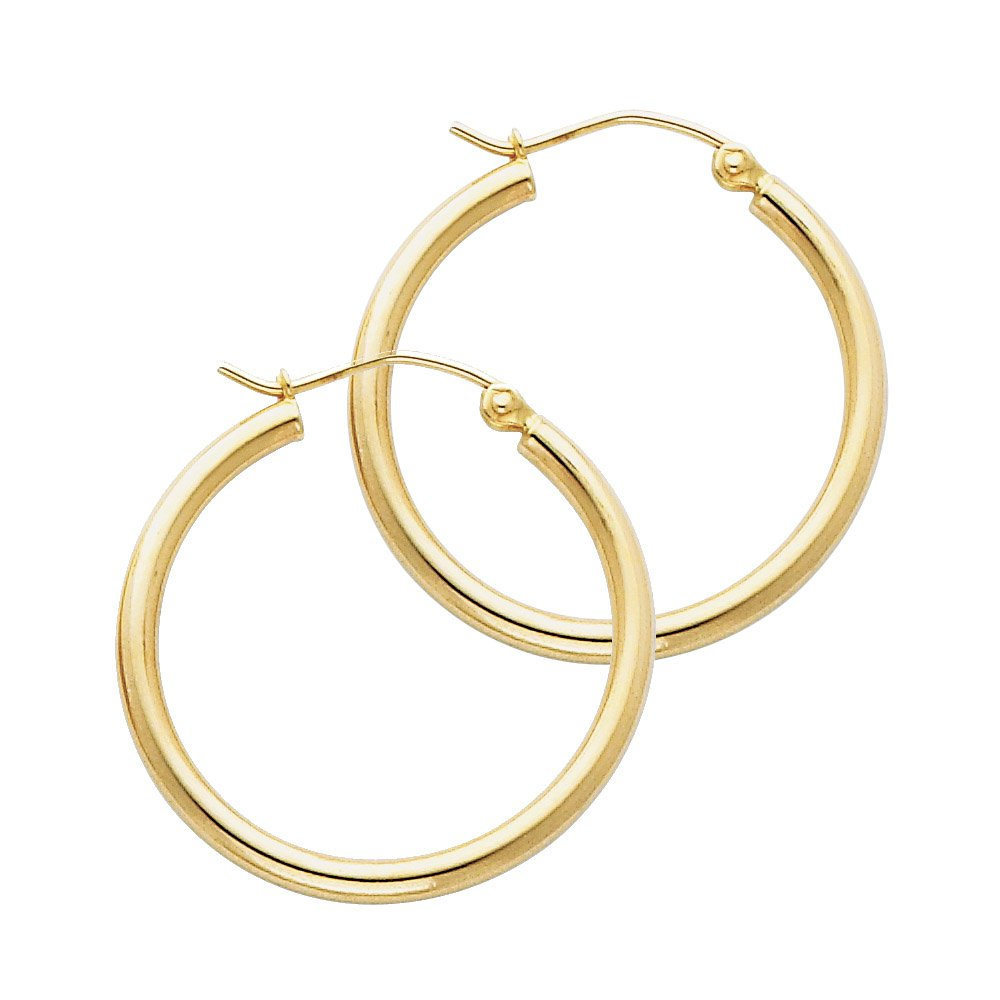 14k Yellow Gold 2mm Thickness Hinged Hoop Earrings (25 x 25 mm)