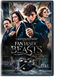 9-fantastic-beasts-and-where-to-find-them-bilingual-2-disc-dvd-uv-digital-copy