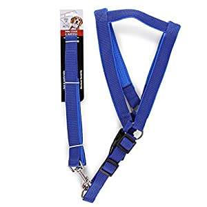 Large Pet leash & Harness