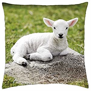 Lamb on the rocks - Throw Pillow Cover Case (18