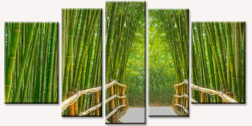 Amazon.com: Startonight Canvas Wall Art Bamboo Aleey, Bridge USA Design For  Home Decor, Dual View Surprise Wall Art Set Of 5 Total 35.43 X 70.87 Inch  100% ...