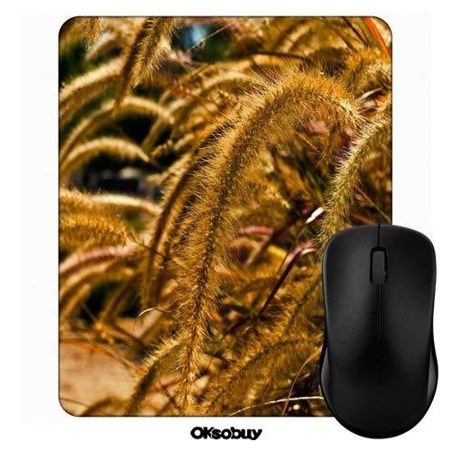 Long Tail Grass Mouse Pad Oksobuy Custom Design,European City Landscape Mouse pad Gaming Mousepad Nonslip Rubber Backing ()