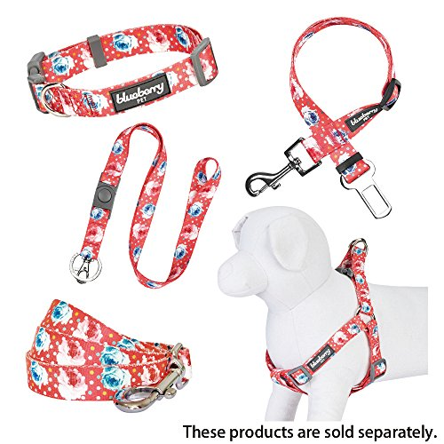 Image of Blueberry Pet Durable Spring Scent Inspired Rose and Polka Dot Print Brink Pink Dog Leash 5 ft x 3/4