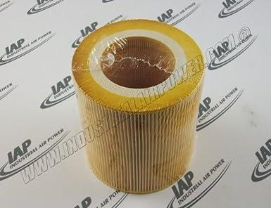 89295976 Filtro de aire Element diseñado para uso con Ingersoll Rand compresores: Amazon.es: Amazon.es