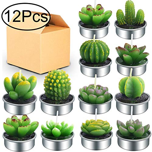 Outee 12 Pcs Cactus Tealight Candles Handmade Delicate Succulent Cactus Candles Flameless Aromatherapy 12 Designs for for Birthday Party Wedding Spa ()