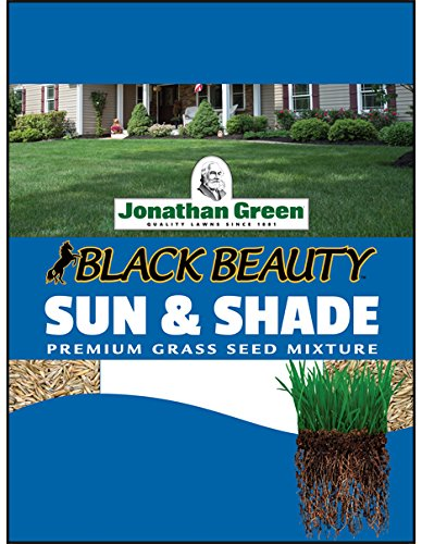 Jonathan Green 12002 Sun and Shade Grass Seed Mix, 3 Pounds (Best Plants To Grow In Shade)