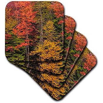 Adirondack Mountains Autumn-Colored Trees Soft Coasters Multicolor New York 3D Rose USA