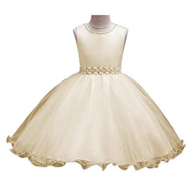 cbe6026e1b Amazon.com  Cute Kids Girls Dress Baby Girl Party Wedding Formal Bridesmaid  Princess Lace Birthday Dresses  Clothing