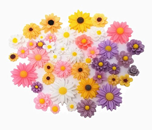 Jewelry Charm Resin (Honbay 44pcs Mix Color Lovely Daisy Flatback Charms Hair Clip Hairpin DIY Craft Jewelry Decoration Pieces)