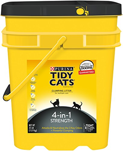 Tidy Cats Cat Litter, Clumping, 4-in-1 Strength, 35-Pound Pail, Pack of 1 (Tidy Cat 35 Lb Cat Litter compare prices)