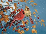 Winter Cardinals 500 piece Puzzle by Outset Media Games
