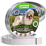 LorddDon⭐⭐⭐⭐⭐ Flea and Tick Prevention Collar One Size Fits All Dogs and Cats Flea and Tick Control with Adjustable Design