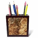 3dRose TDSwhite – Rock Photos - Rock Geology - 5 inch Tile Pen Holder (ph_281918_1)