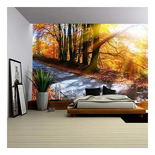 wall26 - Panoramic Autumn Landscape with Country Road in Orange Tone. Nature Background - Removable Wall Mural | Self-Adhesive Large Wallpaper - 100x144 inches