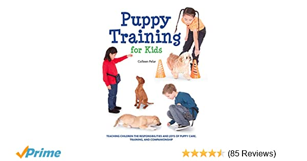 Puppy Training for Kids: Teaching Children the