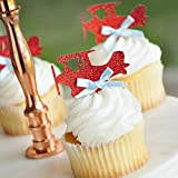 Airplane Cupcake Toppers. Airplane Birthday Party Decorations. 12 COUNT