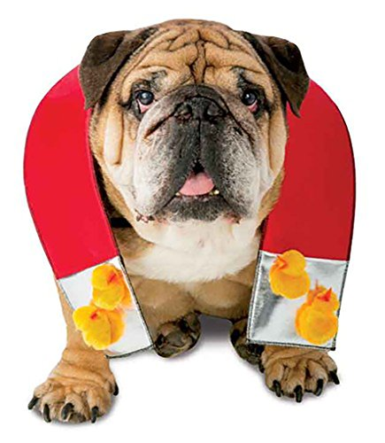 Chick Magnet Costumes - Faerynicethings Zelda Chick Magnet Pet Costume