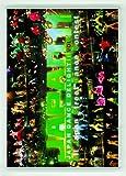 JAPAN DANCE DELIGHT VOL.11 [DVD]