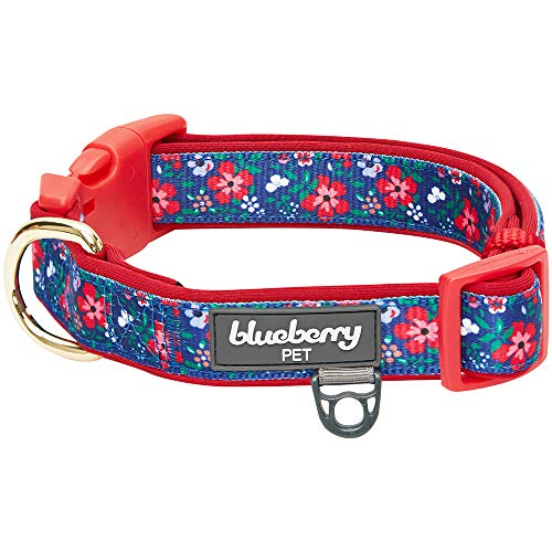 Blueberry Pet 2019 New 8 Patterns Soft & Comfy Pretty Posies Spring Garden Navy Padded Adjustable Dog Collar, Small, Neck 12