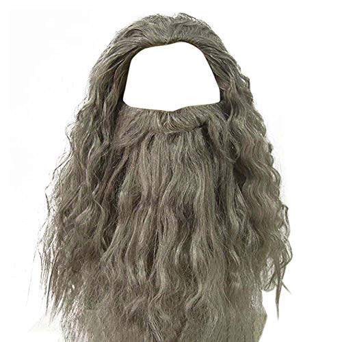 Men's Grey Wizard Wig and Beard Set Curly Messy Long Hair Old Man Wizard Costume Wig Halloween Fancy Dress Accessories for Adult (Grey Wig+Beard) -