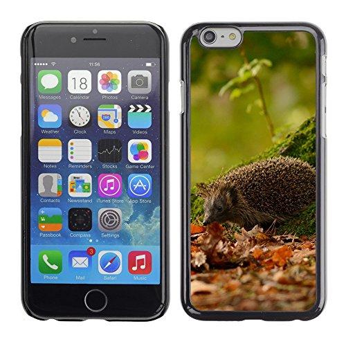 "Premio Sottile Slim Cassa Custodia Case Cover Shell // V00003411 hérisson sous l'arbre // Apple iPhone 6 6S 6G 4.7"""