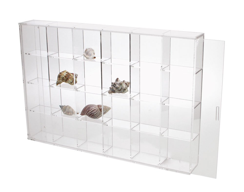 Seashell Display Case - Large 24 Compartments SAFE 5259SS