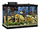 Tetra 20 Gallon Glass Aquarium Tank Kit w/ filter heater LED & plants