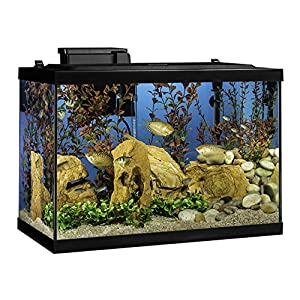 Tetra Aquarium 20 Gallon Fish Tank Kit, Includes LED Lighting and Decor 86