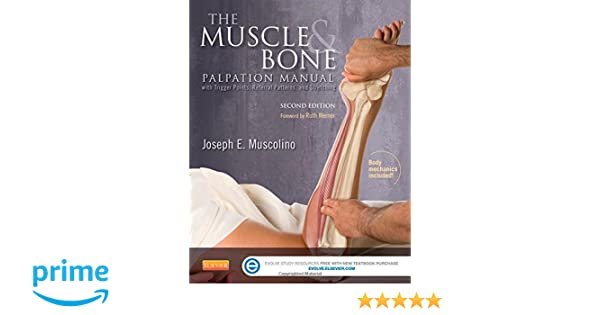 Musculoskeletal Anatomy Coloring Book By Joseph E Muscolino : The muscle and bone palpation manual with trigger points referral
