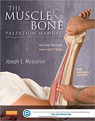 Book The Muscle and Bone Palpation Manual with Trigger Points, Referral Patterns and Stretching, 2e