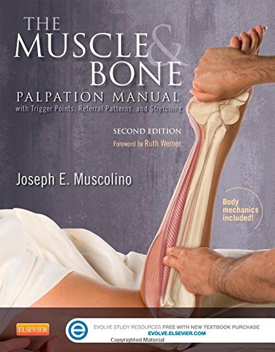 The Muscle and Bone Palpation Manual with Trigger Points, Referral Patterns and Stretching, 2e