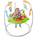 Fisher Price Baby - Jumperoo Rainforest - upto 15mths aprox - 900CHM91