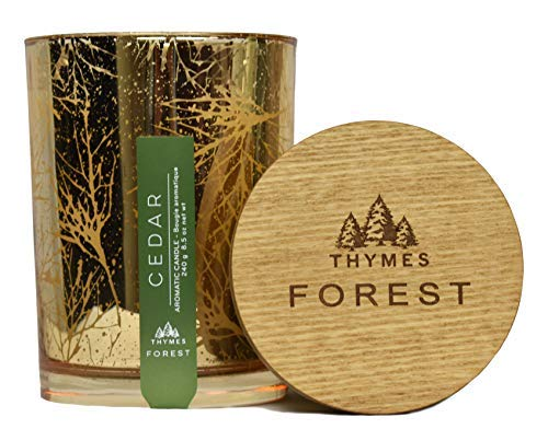 Thymes Frasier Fir Poured Candle, Cedar-New Item by Thymes (Image #1)
