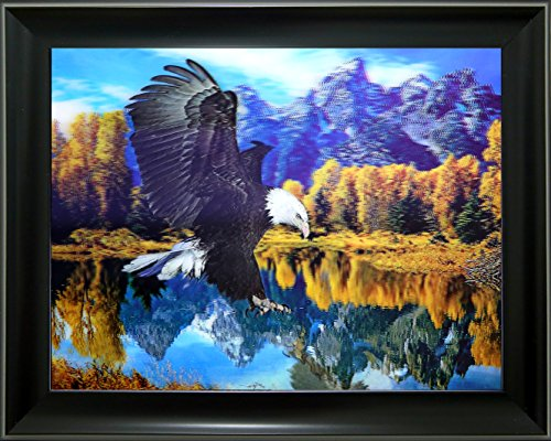 Lee's Collection Flying Eagle 3D Holographic Animated Picture with Black Frame-18.5 Inches x 14.5 ()