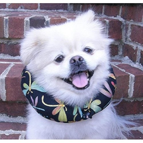 Puppy Bumpers Black Dragonflies For Dogs With Necks Ranging 10-13
