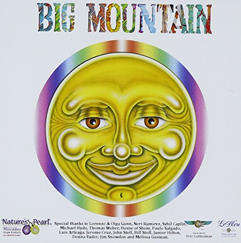 Big Mountain - 1994 - Top 100 - Zortam Music